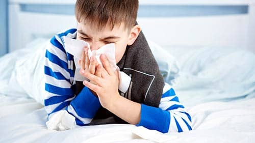 Asthma and Allergy Reduction