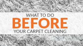What to know before you schedule your carpet cleaning.
